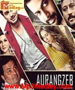 Aurangzeb 2013